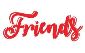 Friends Gençlik Kampı- kurumsal gelişim danışmanlığı