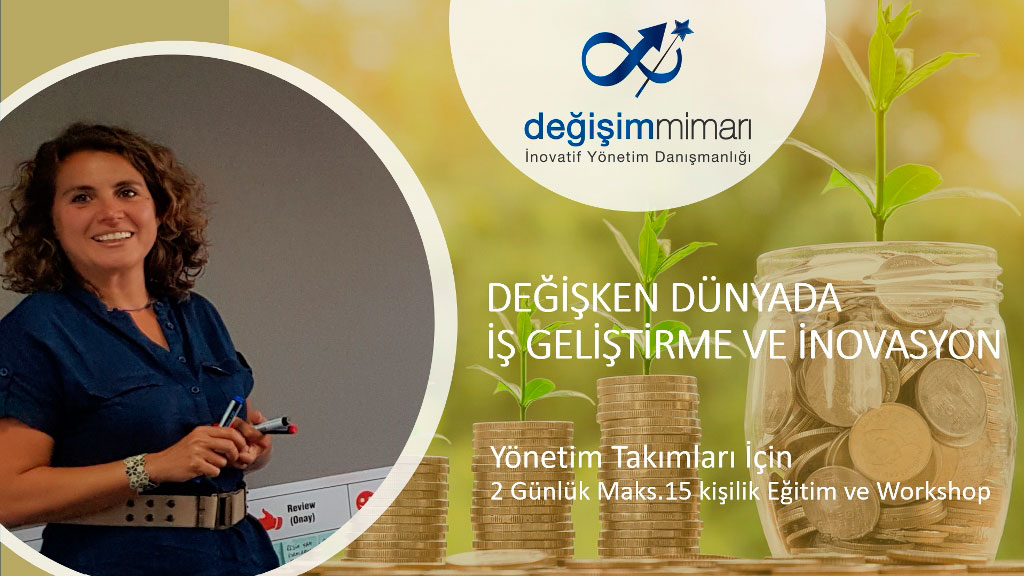 DDIG01-Değişken Dünyada İş Geliştirme ve İnovasyon